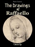 The Drawings of Raffaello: Close Up