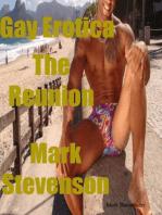 Gay Erotica the Reunion