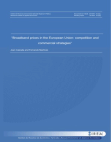 Broadband prices in the European Union: competition and commercial strategies