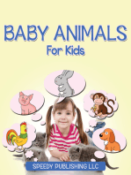 Baby Animals For Kids