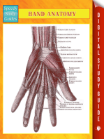 Hand Anatomy Speedy Study Guides