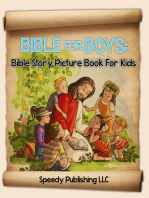 Bible For Boys