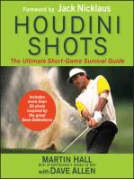 Houdini Shots