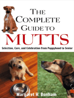 The Complete Guide to Mutts