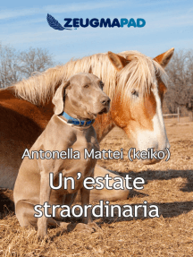 Un'estate straordinaria