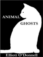 Animal Ghosts