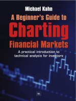 A Beginner's Guide to Charting Financial Markets