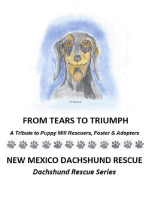 From Tears to Triumph