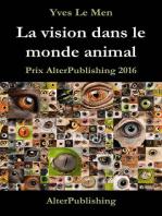 La vision dans le monde animal
