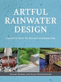 Artful Rainwater Design: Creative Ways to Manage Stormwater