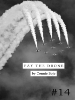 Pay the Drone