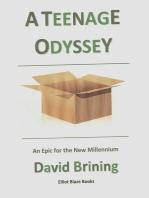 A Teenage Odyssey