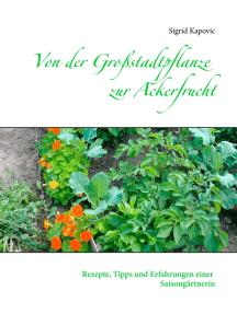 Von der Großstadtpflanze zur Ackerfrucht: Rezepte, Tipps und Erfahrungen einer Saisongärtnerin