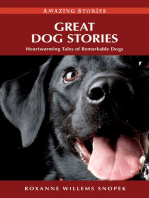Great Dog Stories
