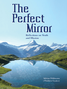 The Perfect Mirror: Reflections on Truth and Illusion