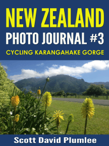 New Zealand Photo Journal #3: Cycling Karangahake Gorge