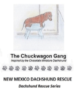 The Chuckwagon Gang