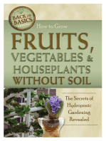How to Grow Fruits, Vegetables & Houseplants Without Soil