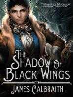 The Shadow of Black Wings
