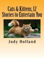 Cats & Kittens, 12 Stories to Entertain You!