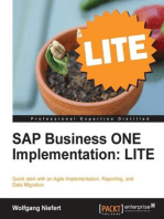 SAP Business ONE Implementation: LITE