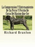 La Comprension Y Entrenamiento De Su Perro Y Perrito De Corso Del Baston Que Ser