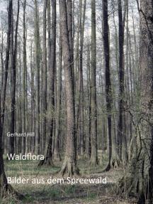 Waldflora: Bilder aus dem Spreewald