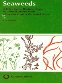 Seaweeds: A Color-Coded, Illustrated Guide to Common Marine Plants of the East Coast of the United States
