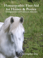 Homeopathic First-Aid for Horses & Ponies