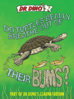 Do Turtles Really Breathe Out of Their Bums?