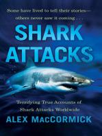 Shark Attacks: Terrifying True Accounts Of Shark Attacks Worldwide
