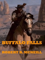 Buffalo Falls