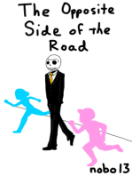 The Opposite Side Of The Road