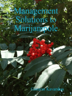 Management Solutions to Marijampole