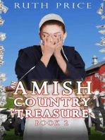 An Amish Country Treasure 2