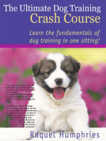 The Ultimate Dog Training Crash Course