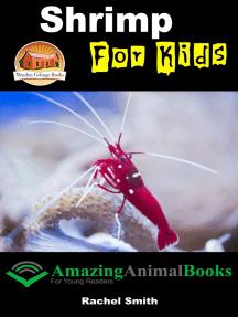 Shrimp For Kids