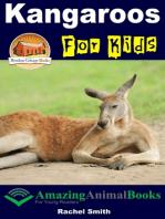 Kangaroos For Kids