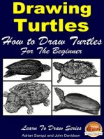 Drawing Turtles