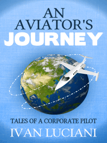 An Aviator's Journey: Tales of a Corporate Pilot