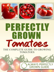 Perfectly Grown Tomatoes: The complete guide to growing tomatoes