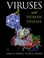 Viruses and Human Disease