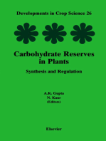 Carbohydrate Reserves in Plants - Synthesis and Regulation