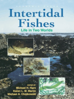 Intertidal Fishes: Life in Two Worlds