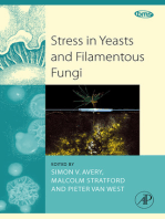 Stress in Yeasts and Filamentous Fungi