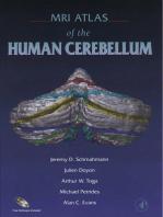 MRI Atlas of the Human Cerebellum