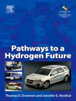 Pathways to a Hydrogen Future