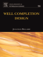 Well Completion Design
