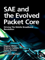 SAE and the Evolved Packet Core