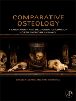 Comparative Osteology